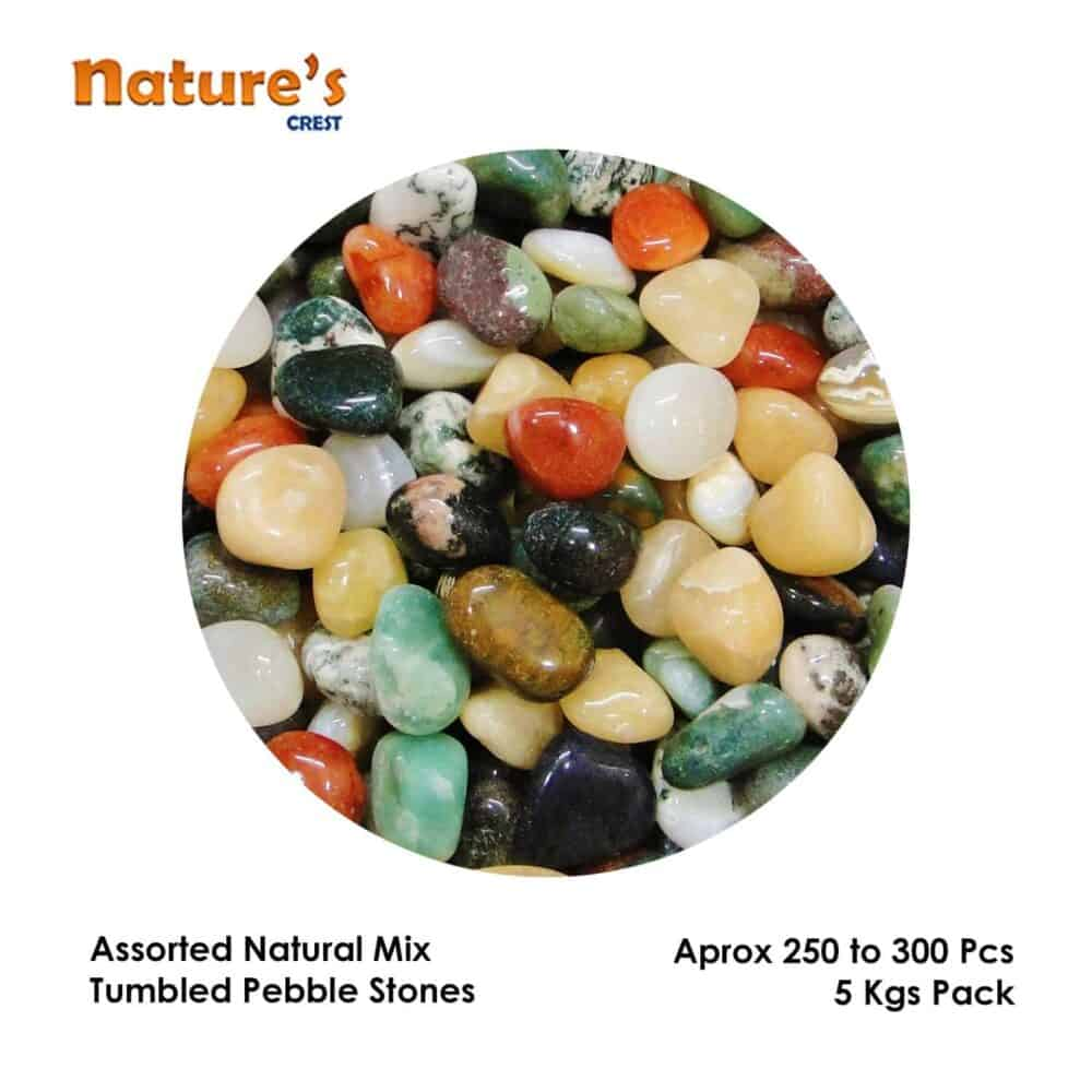 Assorted Mix Tumbled Pebble Stones Nature's Crest TS0000 ₹ 249.00