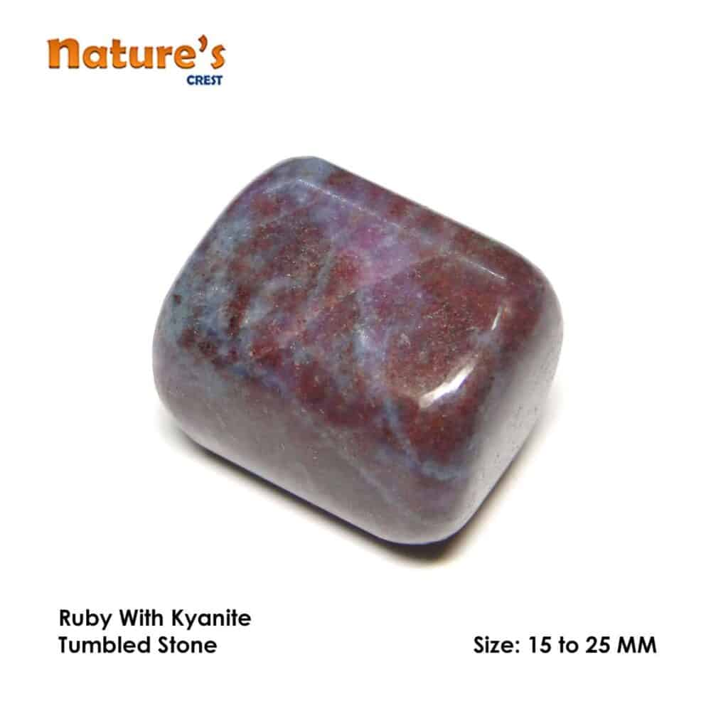 Ruby Kyanite (Manek / Manik) Tumbled Pebble Stones Nature's Crest TS018 ₹249.00