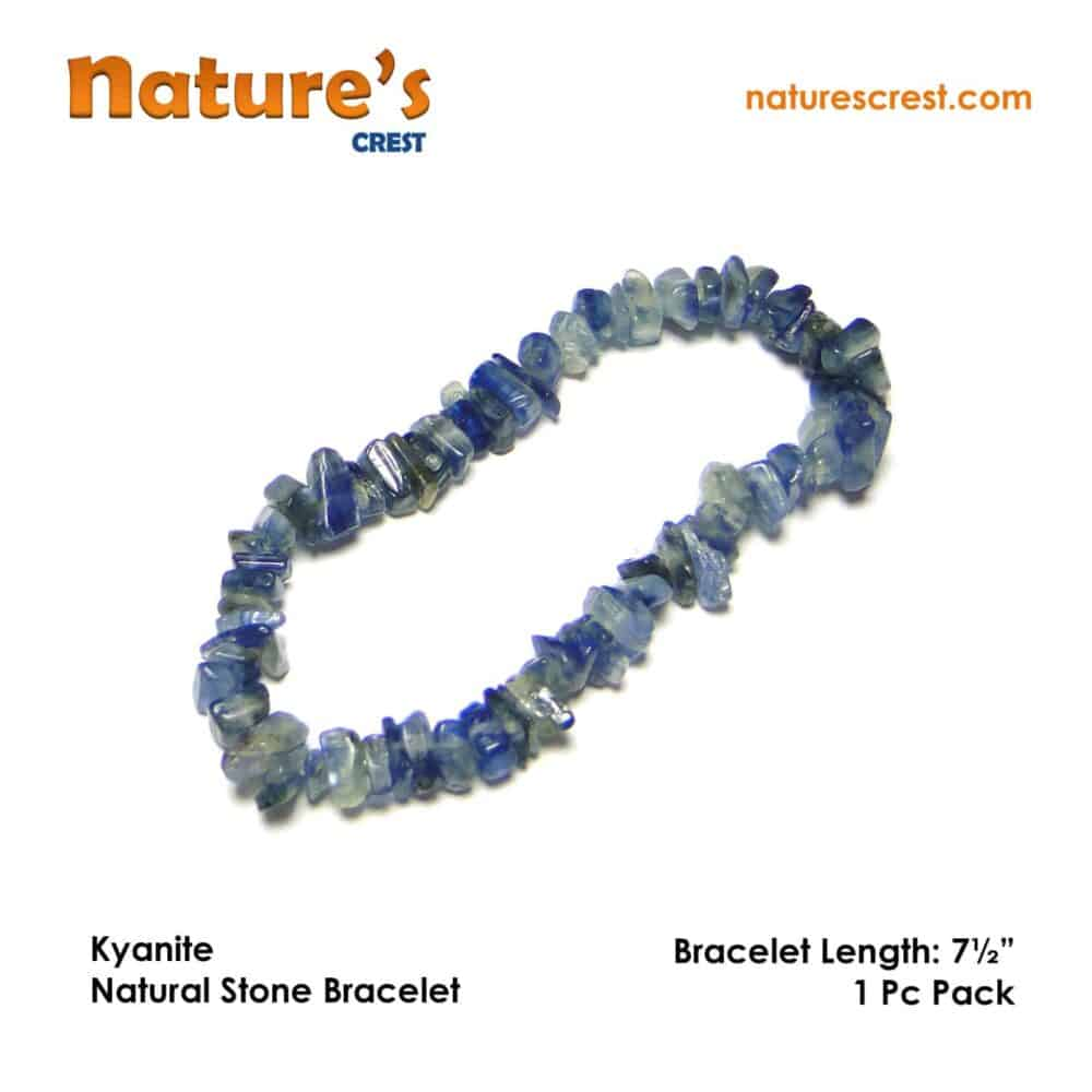 Kyanite Chip Beads Nature's Crest TC029 ₹399.00